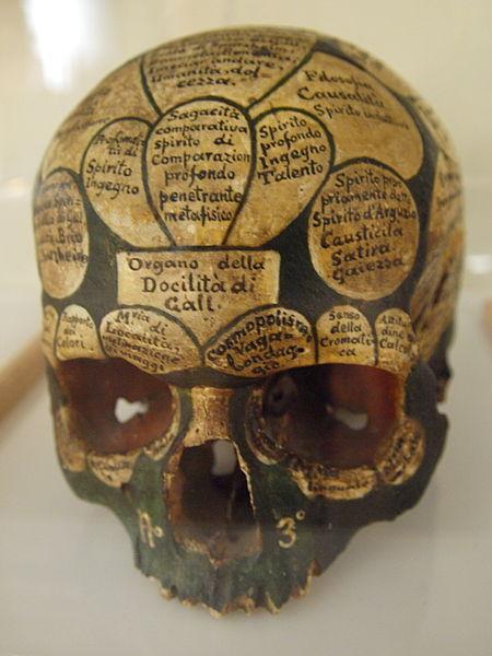 galls-head